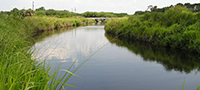 Providing Reservoir Storage for Restoration of the Florida Everglades